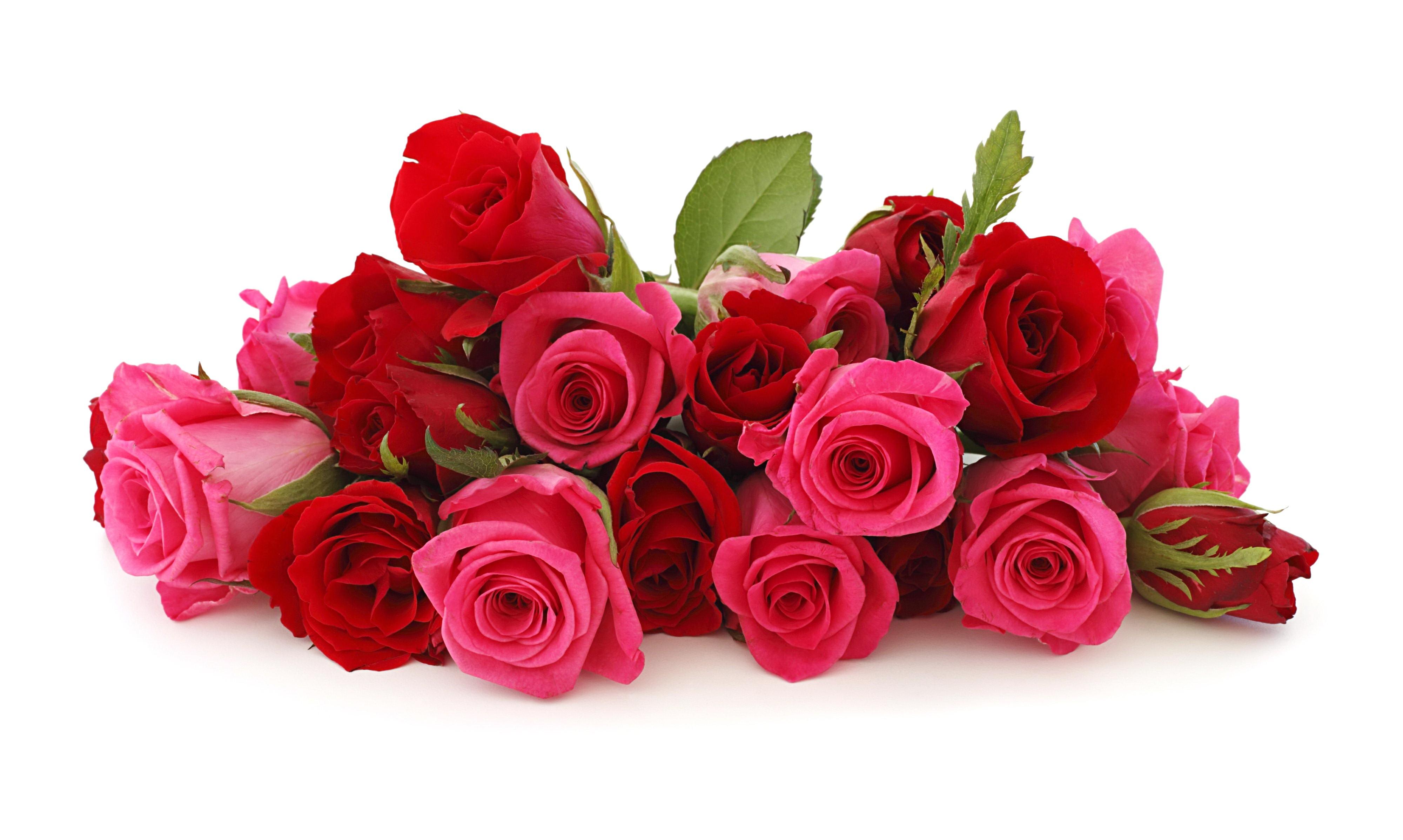 จำนวนดอกกุหลาบ แห่งรัก..