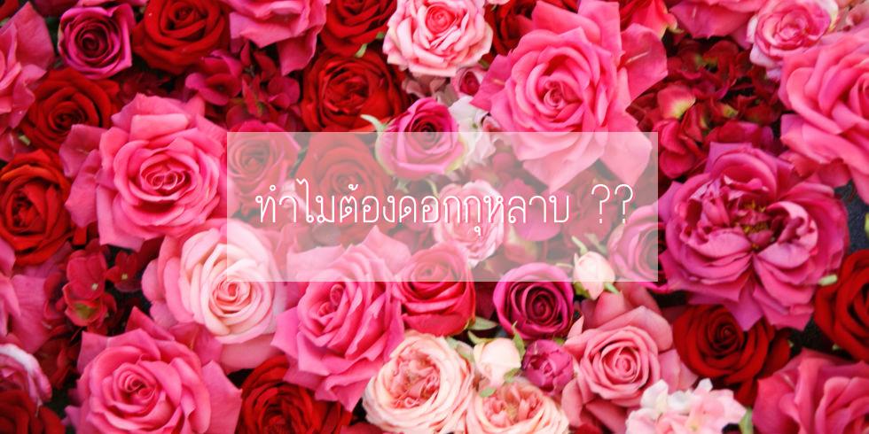 ทำไมต้องดอกกุหลาบ